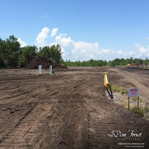 Preconstruction site-work at Pine Forest of Oak Island for Novant Health Family Medicine facility.