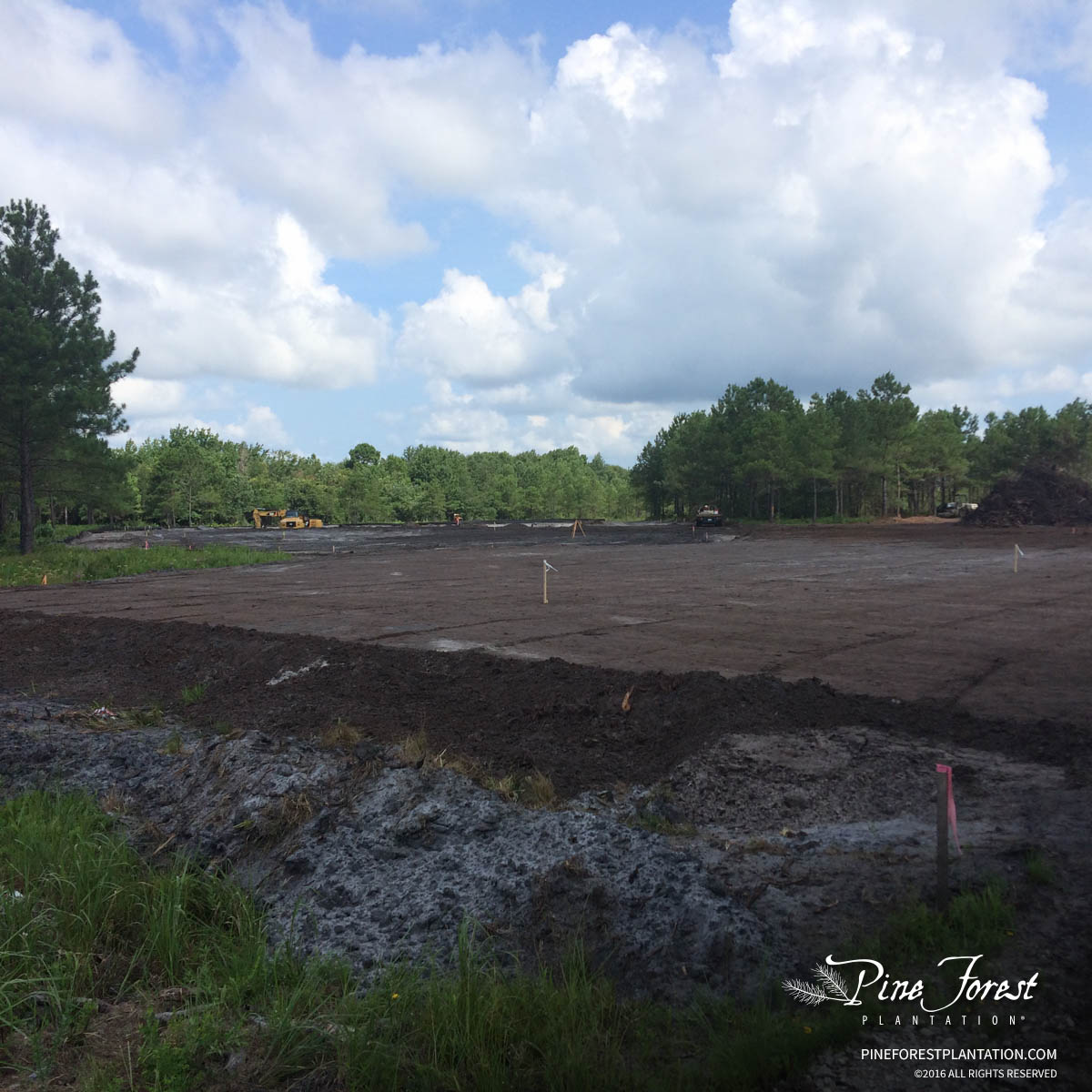 Construction progress at Pine Forest for the future Novant Health facility.