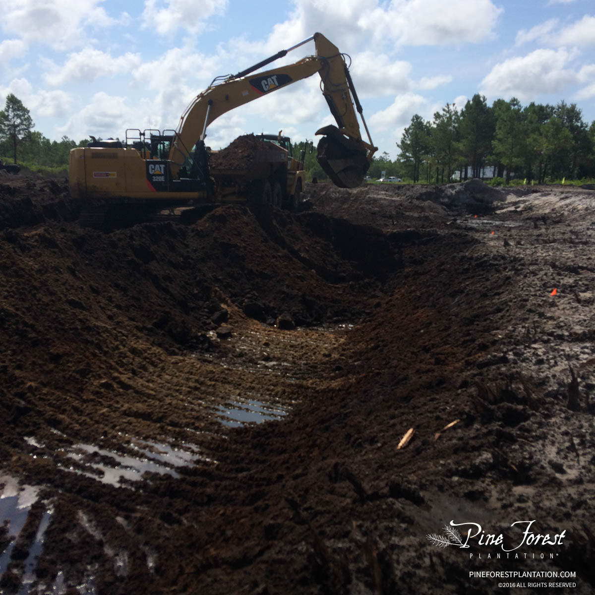 Infrastructure Earthwork at Pine Forest of Oak Island