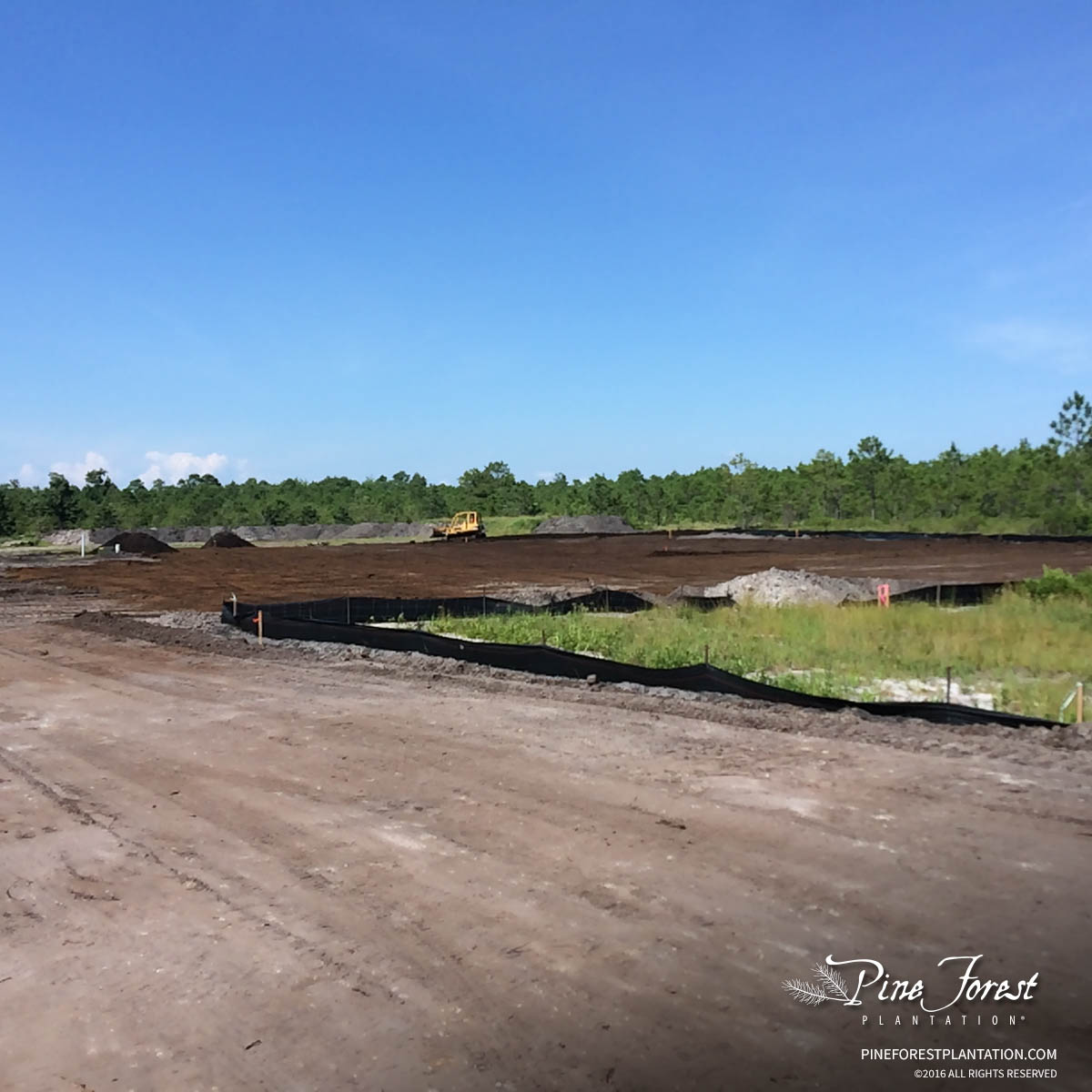 Preparing Novant Health construction site ahead of building in Pine Forest of Oak Island, NC.