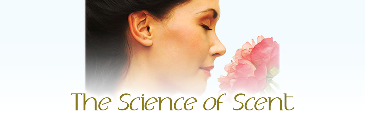 The Science of Scent at the Museum of Coastal Carolina